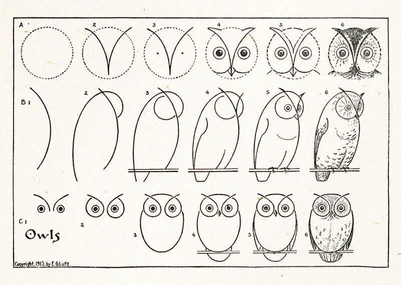 How to Draw Owls