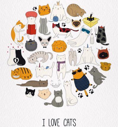 I-LOVE-CATS